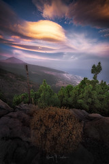 UFOs (Ramón Menéndez Covelo) Tags: canarias canary islands tenerife teide parque nacional