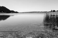 Lac de Taillères - La Brevine (MarcoAgustoniPhotography) Tags: schweiz suisse svizzera la brevine lake see bn bw