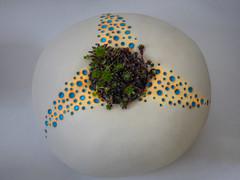 The Flower Pot (Steve Taylor (Photography)) Tags: art pottery cream blue yellow orange uk gb england greatbritain unitedkingdom plant succulent pattern hallplace