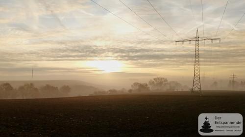 Joggen zwischen Selzen und Dexheim, Rheinhessen