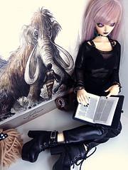 Majollica (the.magnificent.rabbit) Tags: bjdhybrid fairylandbjd memoles dollroom minifee