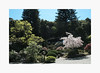 Hakone Gardens In The Spring (bnishimoto) Tags: fuji fujifilm myfujifilm xpro2 hakonegardens saratoga bayarea photoessay 1855mm classicchrome color japananesegarden nature spring