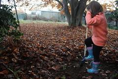 Child at work! (Fabio Cc) Tags: child autumn work garden giardino lavoro autunno foglie