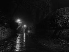 The Spooky Lane.. (Philip R Jones) Tags: halloween spooky creepy night dark longexposure halloween2017 sliders hss sliderssunday halloweenimages