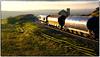 Boulby Bound Tanks (Welsh Gold) Tags: 66559 6f32 south bank tees boulby potash mine tanks train backlit goingaway fanhouse saltburn northyorkshirecoastline
