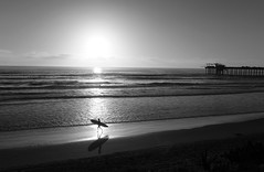 La Jolla sunset with surfer (TPStearns) Tags: monochrome ocean beach sea sunset blackwhitepassionaward sonyrx1 blackandwhite bw surfing sand sky water