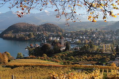 Schloss Spiez ( Baujahr Ursprung 10. Jahrhundert - château castello castle ) am Thunersee in Spiez im Berner Oberland im Kanton Bern der Schweiz (chrchr_75) Tags: christoph hurni schweiz suisse switzerland svizzera suissa swiss chrchr chrchr75 chrigu chriguhurni chriguhurnibluemailch oktober2017 oktober 2017 albumzzz201710oktober albumschlossspiez schlossspiez spiez kantonbern berner oberland berneroberland schloss château castle castello kanton bern thunersee alpensee see lake lac sø järvi lago 湖 albumthunersee