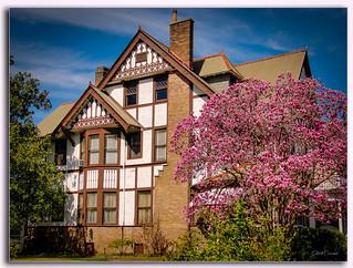 8 Rosa Park, New Orleans                            The Jones-Dicks-Cowand house