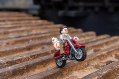 Rey and BB-8 on a bike (Ballou34) Tags: 2017 7dmark2 7dmarkii 7d2 7dii afol ballou34 canon canon7dmarkii canon7dii eos eos7dmarkii eos7d2 eos7dii flickr lego legographer legography minifigures photography stuckinplastic toy toyphotography toys leplessisbelleville hautsdefrance france fr 2016 650d eos650d rebelt4i stuck plastic t4i rebel star wars sw sw7 the force awakens tfa rey bb8 droid bike motorbike