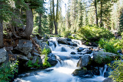 2017 Pac NW Lassen Volcanic-101 (Michael L Coyer) Tags: parks nationalparks usnationalparks unitedstatesnationalparks lassenvolcanicnationalpark lassen lassenvolcanic lassenvolcanicnatlpark mountain mount wilderness forest