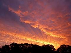 Morgenrot 21.10.2017 - 07:46h (Ellenore56) Tags: 21102017 morgenrot morgenröte sonnenaufgang gutenmorgen redsky sunrise aurora dawn sunup sonnenstrahl sonnenstrahlen strahlen sunbeam sunray rayofsunlight wolke wolken cloud clouds himmel sky heaven himmelwärts skyward heavenward goodmorning sonnenlicht sunlight wetter weather sonne sun wald bäume trees silhouette skyline dertagbeginntfeurig feurig conflagrant fervid themorningbeginsfiery detail moment augenblick sichtweise perception perspektive perspective reflektion reflection reflexion farbe color colour licht light inspiration imagination faszination magic magical stimmung mood panasonicdmctz61 ellenore56 eos laurore sparkle goddesssparkle lichtshow lightshow naturallightshowatthemorning naturalspectacle