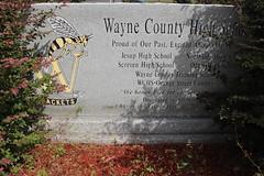 Former high schools in Wayne County monument (MJRGoblin) Tags: waynecounty 2017 jesup georgia