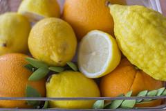 Citrus (yafit770) Tags: citrus fruit lemon orange citron etrog yellow green leaves nature colorful acid vegan vitaminc healthy canon t5