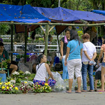 Undas Flower Sellers thumbnail