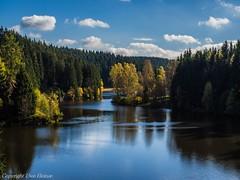 Harz Wanderungen 102017 5 (U. Heinze) Tags: herbst harz olympus nature