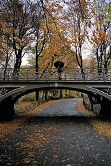 Negative0-27-26(1) (Peter Sikker) Tags: newyorkcity usa steetphotography thebigapple street america centralpark autumn fall raiiny