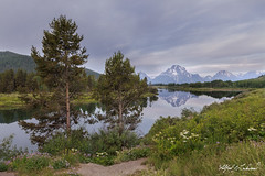 Oxbow Bend - Skunked Again_27A0228 (Alfred J. Lockwood Photography) Tags: alfredjlockwood nature landscape twilight morning clouds river reflection oxbowbend willows mtmoran mountmoran grandtetonnationalpark summer wyoming