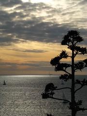 Au fond le phare de Planier (Scratina) Tags: marseille mer coucherdesoleil