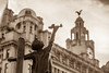 Time to take cover (Fleety Vision) Tags: blitz memorial statue sculpture liverpool st nicholas church liver buildings