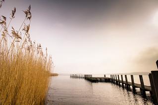Misty Waterline
