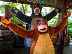 Baloo and King Louie (meeko_) Tags: baloo bear king louie kinglouie orangutan junglebook characters disneycharacters upcountrylanding asia disneys animal kingdom disneysanimalkingdom themepark walt disney world waltdisneyworld florida