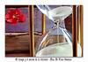 El tiempo y el secreto de la felicidad - Diaz De Vivar Gustavo (Diaz De Vivar Gustavo) Tags: el tiempo y secreto de la felicidad diaz vivar gustavo libro flor razonamientos reloj arena futuro espectativas decisiones conocimiento