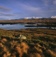 24325968 (anatoliplotnicov) Tags: 24325968 calm copyspace countryside dawn dusk field horizon landscape marsh nature negativespace nobody outdoor peaceful rannochmoor rural scenery scenic scotland serene serenity sunrise sunset tranquil tranquility twilight water wetlands wilderness