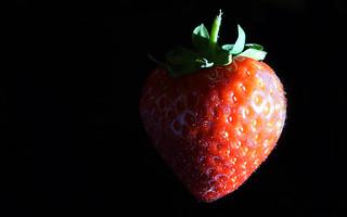 Sidelit Strawberry