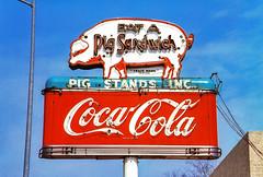 Eat a Pig Sandwich (Thomas Hawk) Tags: america bbq cocacola eatapigsandwich texas usa unitedstates unitedstatesofamerica vintage neon pig postcard fav10 fav25 fav50