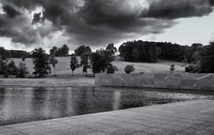 Across the lake (Tim Ravenscroft) Tags: landscape clarkartinstitute usa monochrome blackandwhite blackwhite hasselblad hasselbladx1d x1d