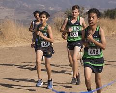 OC Champ 2017_58 (Sharpshooter Alex) Tags: breaolindaboyscrosscountry runners runner running outdoor highschoolsport 2017 male athletes oak canyon park