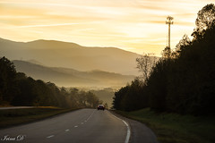 The road to Light. Good morning. (Irina1010) Tags: mountains blueridgemountains sunrise mist golden road light moody beautiful canon outstandingromanianphotographers
