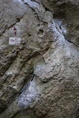 _MG_0251 (nozitep) Tags: bloc boulder climbing cuvier escalade forest france rochers seineetmarne
