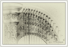 Made in Chicago (TAC.Photography) Tags: chicago harb brass strings music instrument flow curve curves monochrome bw backandwhite blackwhite antique framed photograph photo art artform tomclarkphotographycom tomclark tacphotography d7100
