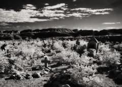 Cementerio Terlingua