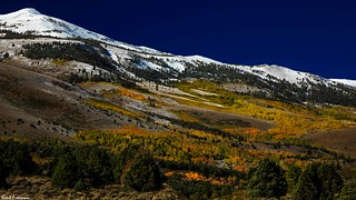Fall Colors Summers Canyon