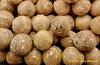 """""""Naked Coconut"""", Coco Pelado, El Salvador (ssspnnn) Tags: cocosnucifera arecaceaefamily canoneos70d coco cocoa coconut aguadecoco coconutwater coqueiro spnunes nunes snunes spereiranunes"""