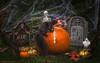 Happy Halloween (hey its k) Tags: backyard halloween2017 squirrels hamilton ontario canada ca img3150e canon6d fun kitkat pumpkin halloween autumn skeleton ghost
