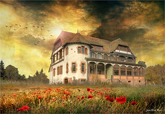 Haunted (Jean-Michel Priaux) Tags: house haunted home scary scare abandonned terrific sky photoshop alsace place deserted creep creepy horrific hôtel hotel lonesome ghost paint painting