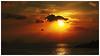 黃昏的過客   Pass by at sunset (Alice 2017) Tags: 2017 sea water habour clouds bird fly sky evening people autumn hongkong ilce6000 sony a6000 sonya6000 sonysel1670zcarlzeissvariotessart tessar zeiss carlzeiss orange light sun sunset aatvl02 aatvl01 3000v120f aatvl03 aatvl04 aatvl05
