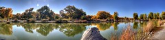 South Pond Tingley Beach (JoelDeluxe) Tags: tingley beach abq bosque albuquerque dukecity nm newmexico biopark ponds fall colors red orange yellow green blue ducks wildlife fishing recreation landscape panorama hdr joeldeluxe