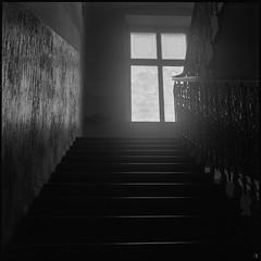 Level Up (argentography) Tags: prague czechrepublic europe yashica124 ilfordhp5 monochrome interior staircase