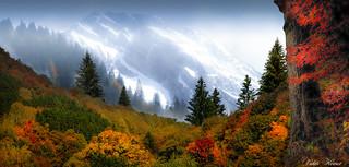 Un automne flamboyant