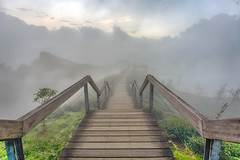 大崙山觀光茶園 (bibi.barbie) Tags: taiwan 南投縣 鹿谷鄉 大崙山 茶園 風景 夕陽 夜景 琉璃光 雲海 天空