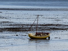 Aground (dudutrois) Tags: aground