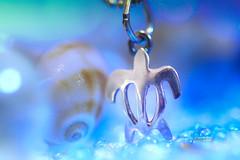 Hawaiian souvenirs (Tomo M) Tags: souvenir macromondays hawaii beach bokeh silver pendant turtle ウミガメ shell blue sea