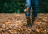 Playing autumn (V Photography and Art) Tags: fallingleaves falling steps boots woods woodland leaves autumn colour walking playing sp