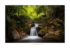 Artikutza (begonafmd) Tags: artikutza bosque forest rio river naturaleza paisaje largaexposicion logeexposure cascada euskadibasquecountry euskalherria