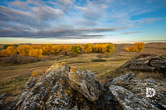 Rock Ridge #379 (DBruner240) Tags: rocks ridge fall colors cottonwoods scene western north dakota nd trees sunrise clouds ngc national geographic