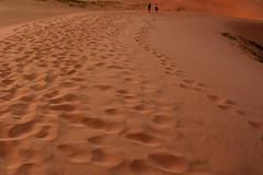 Paseando el Gobi. (Victoria.....a secas.) Tags: mongolia gobi desierto desert dunas dunes